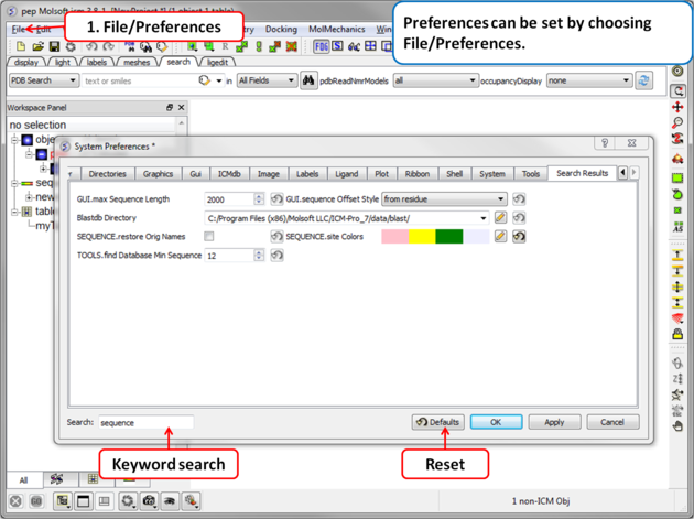 ICM User's Guide: Preferences